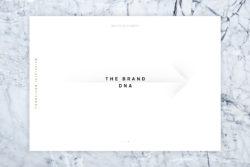 Bureau_Display_Identity_Graphic_Design_Grafik_Visual_Communication_Lucerne_Zurich_Conscious_Initiative_3