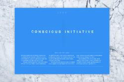 Bureau_Display_Identity_Graphic_Design_Grafik_Visual_Communication_Lucerne_Zurich_Conscious_Initiative_8