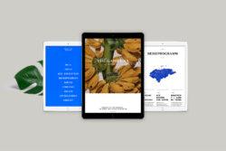 Bureau_Display_Graphic_Design_Visual_Communication_Lucerne_Zurich_Expedition_Honduras_17