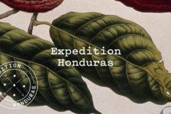 Bureau_Display_Graphic_Design_Visual_Communication_Lucerne_Zurich_Expedition_Honduras_3