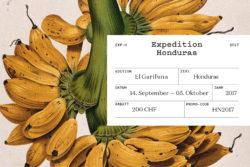 Bureau_Display_Graphic_Design_Visual_Communication_Lucerne_Zurich_Expedition_Honduras_8