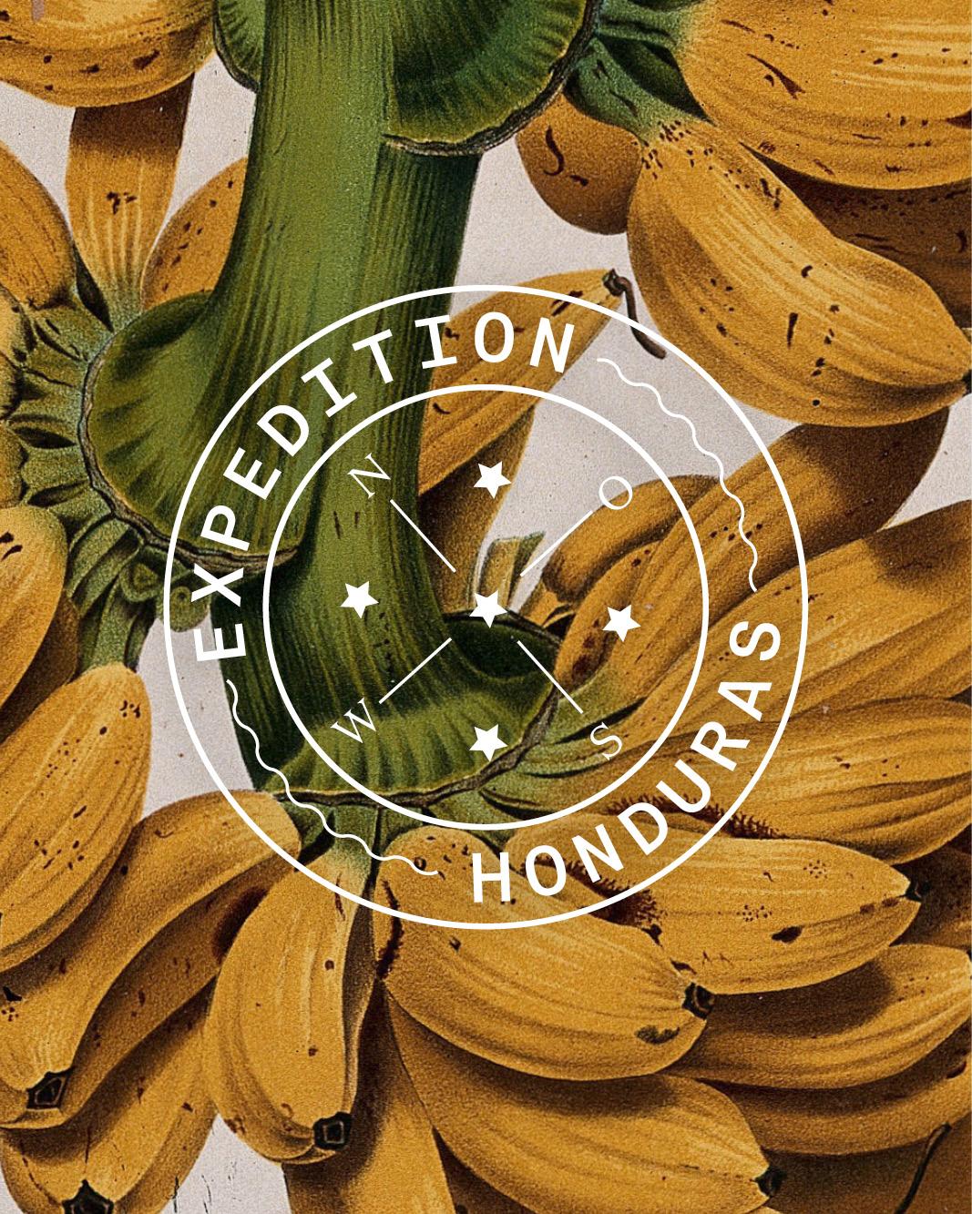 Bureau_Display_Graphic_Design_Visual_Communication_Lucerne_Zurich_Expedition_Honduras_Thumb